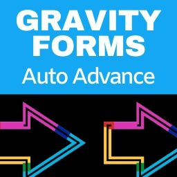 gravity-forms-auto-advance-demo
